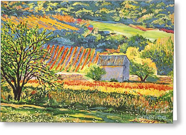 Vineyards Of Provence Greeting Card