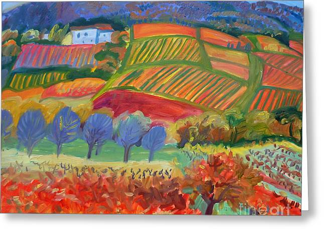 Vineyards. South Of France Greeting Card