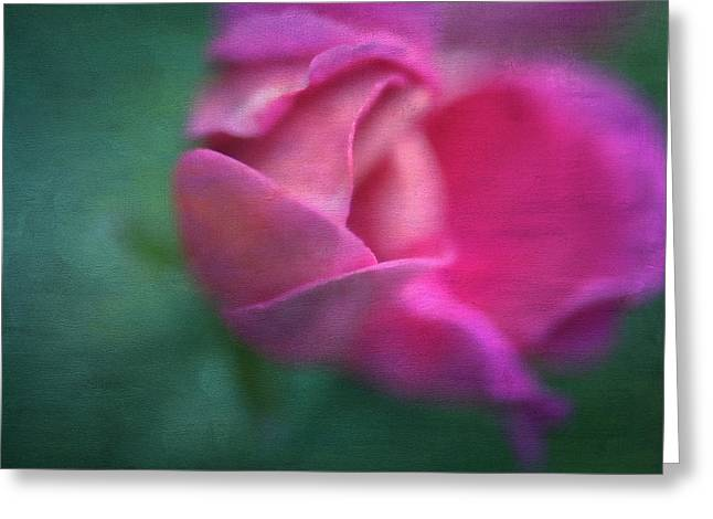 Vining Geranium Bud, Digitally Altered Greeting Card by Rona Schwarz