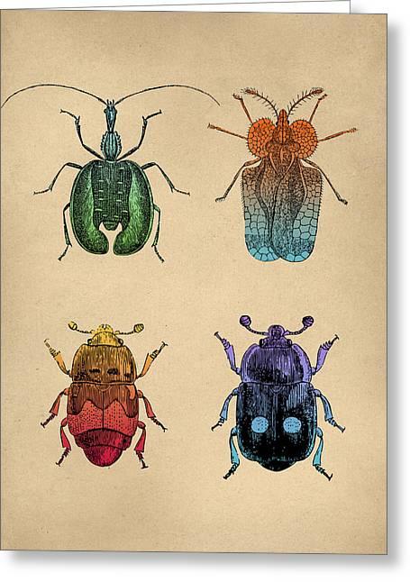 Vintage Beetles Tinted Engraving Greeting Card by Flo Karp