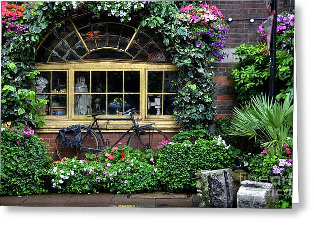 Vintage Bicycle At The Window Greeting Card by RicardMN Photography