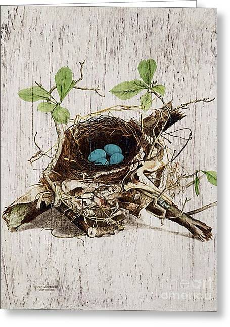Vintage Bird Nest French Botanical Art Greeting Card by Cranberry Sky
