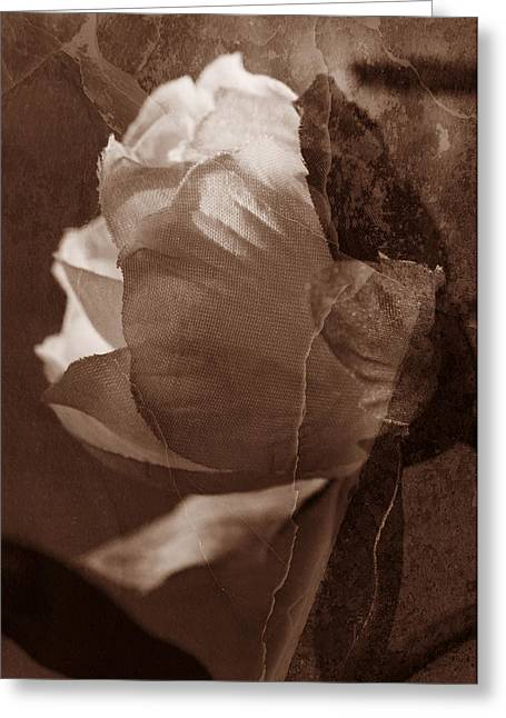 Vintage Camelia Greeting Card