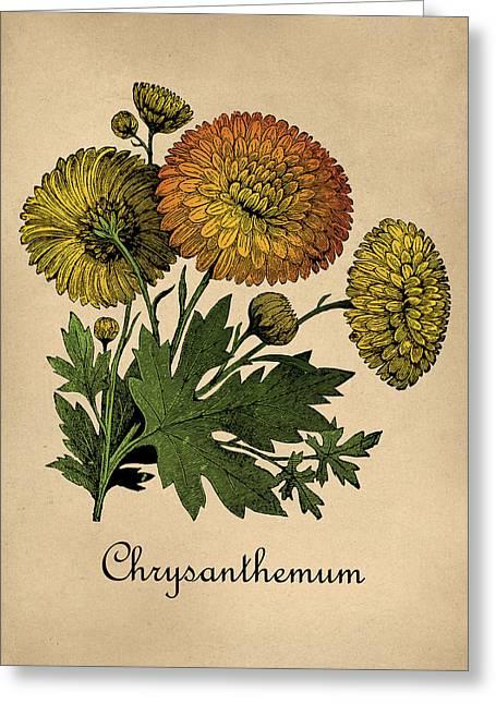 Vintage Chrysanthemums Botanical Greeting Card by Flo Karp