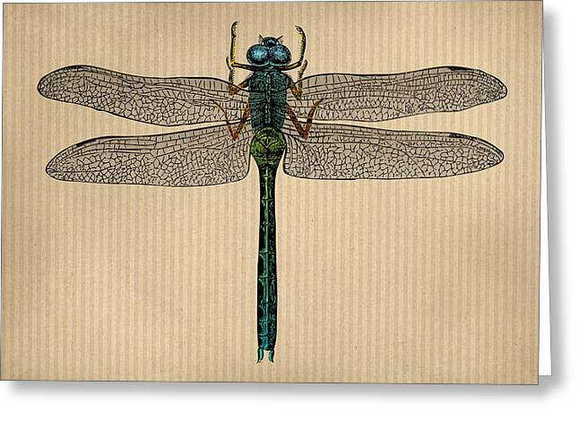 Vintage Dragonfly Tinted Engraving Greeting Card by Flo Karp