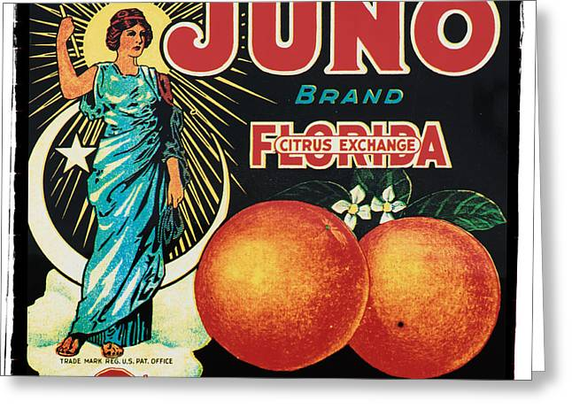 Vintage Florida Food Signs 1 - Juno Brand - Square  Greeting Card