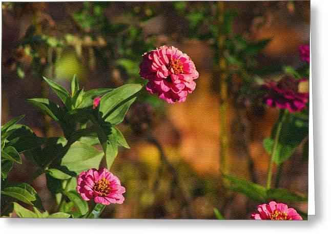 Vintage Flower Greeting Card by Rhonda Humphreys