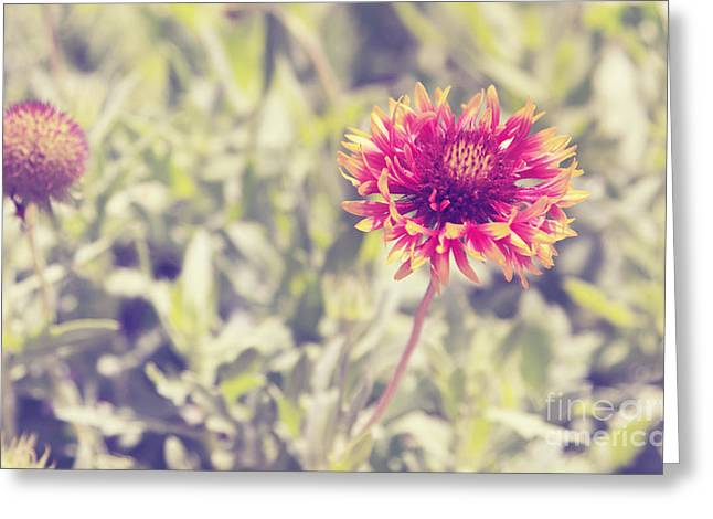 Greeting Card featuring the photograph Vintage Flowers by Mohamed Elkhamisy