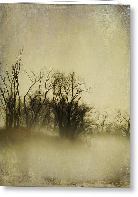 Vintage Fog Greeting Card by Gothicrow Images