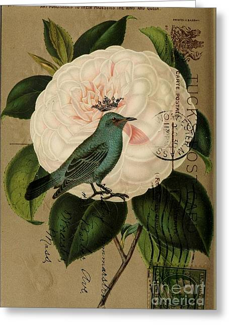 Vintage French Botanical Art Pink Rose Teal Bird Greeting Card by Cranberry Sky