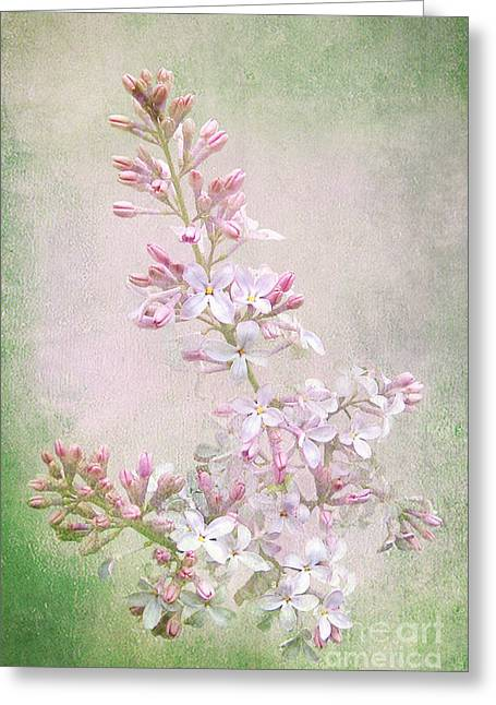 Vintage Lilac Greeting Card