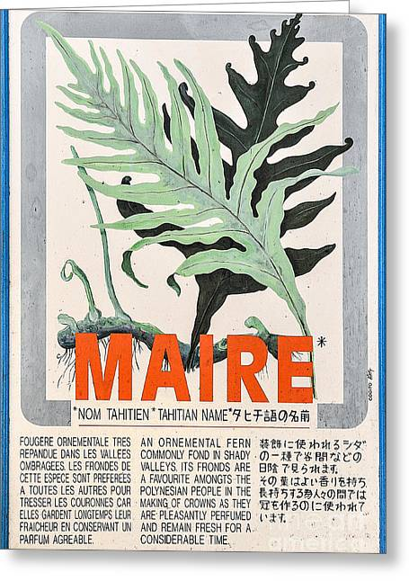 Vintage Market Sign 1 - Papeete - Tahiti - Maire - Fern Greeting Card by Ian Monk