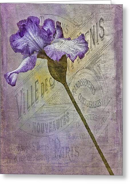 Vintage Pourpre Iris Greeting Card by Chanin Green