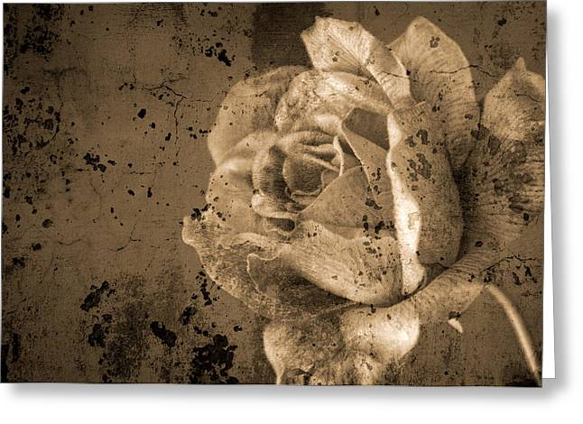 Vintage Rose Greeting Card