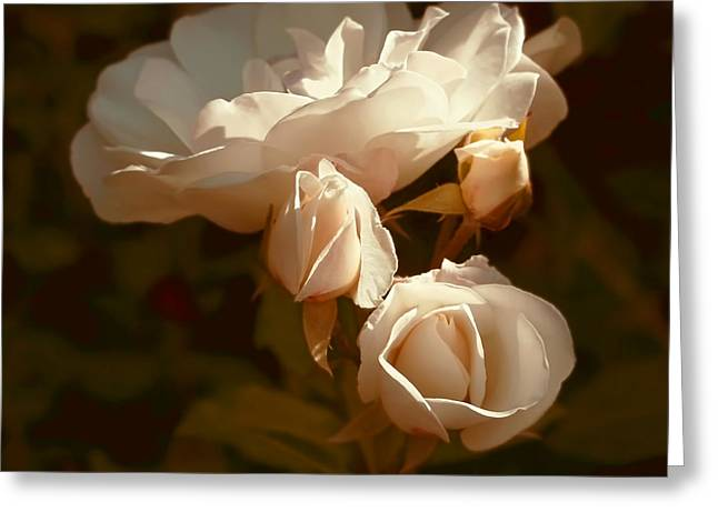 Light Peach Greeting Cards - Vintage Roses Splendor Greeting Card by Jennie Marie Schell