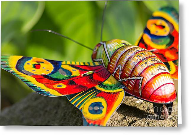 Vintage Tin Toy Butterfly Greeting Card by Palatia Photo