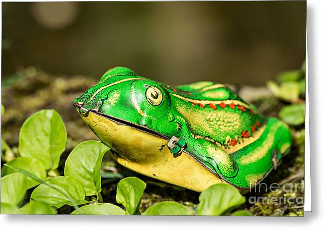 Vintage Tin Toy Frog Sitting In The Grass Greeting Card by Palatia Photo