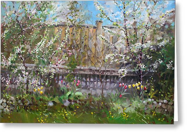 Viola's Apple And Cherry Trees Greeting Card by Ylli Haruni