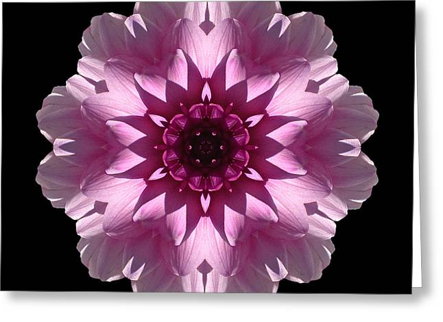 Violet And White Dahlia I Flower Mandala Greeting Card by David J Bookbinder