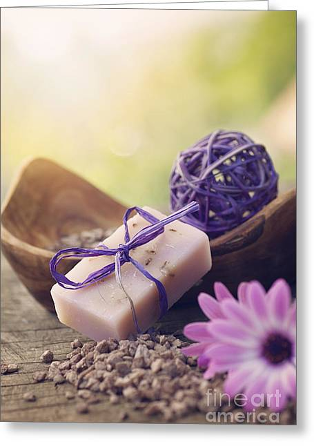 Violet Dayspa Nature Set Greeting Card