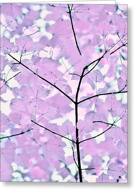 Violet Lavender Leaves Melody Greeting Card by Jennie Marie Schell