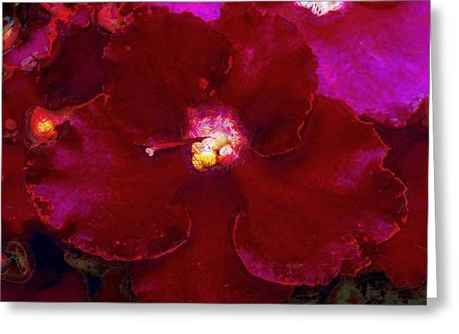 Violets No. 3 Greeting Card