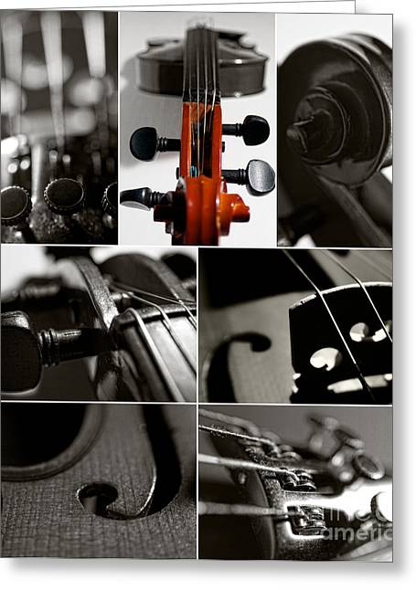 Violin Collage Greeting Card
