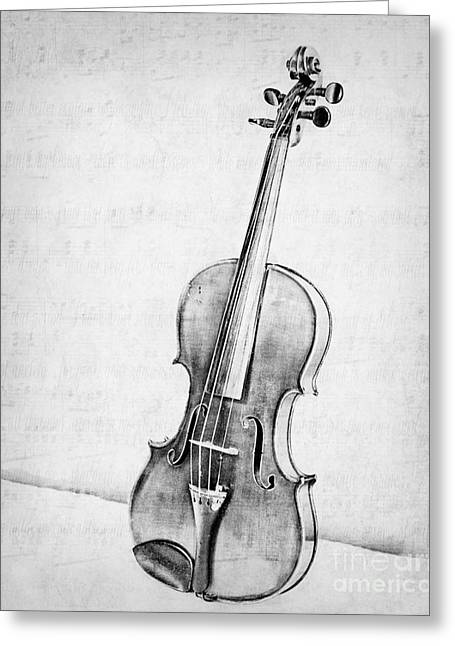 Violin In Black And White Greeting Card by Emily Kay