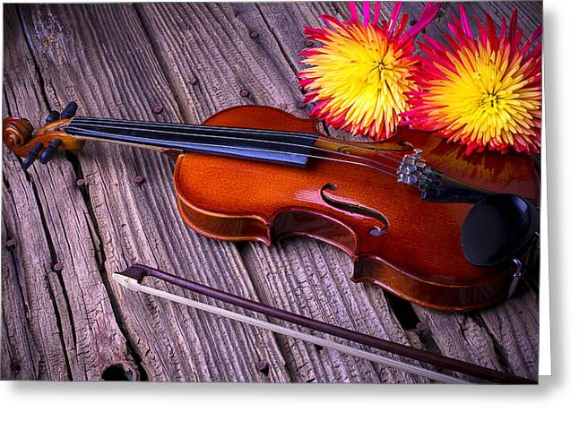 Violin With Spider Mums Greeting Card by Garry Gay