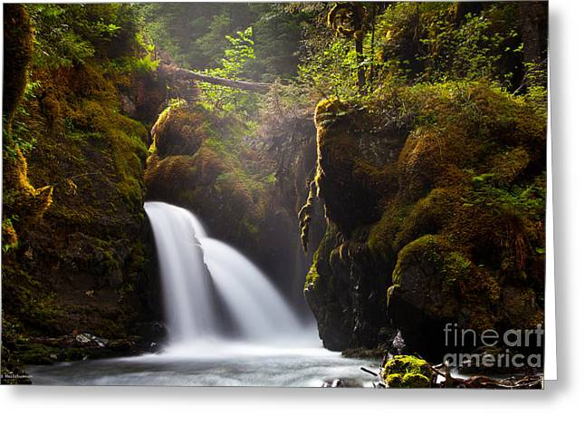 Virgin Creek Falls Greeting Card