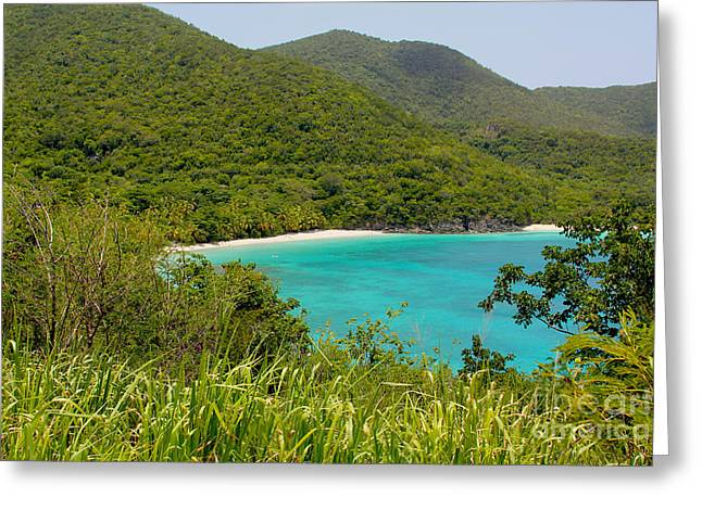 Virgin Islands Greeting Card by Carey Chen