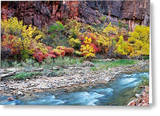 Virgin River And Rock Face At Big Bend Greeting Card by Panoramic Images