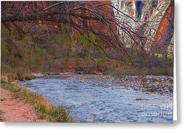 Virgin River In Zion Greeting Card