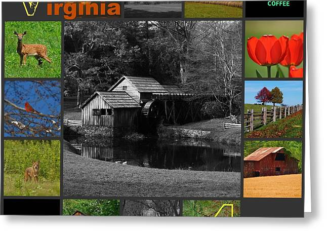 Virginia Artist  Greeting Card by Eric Liller