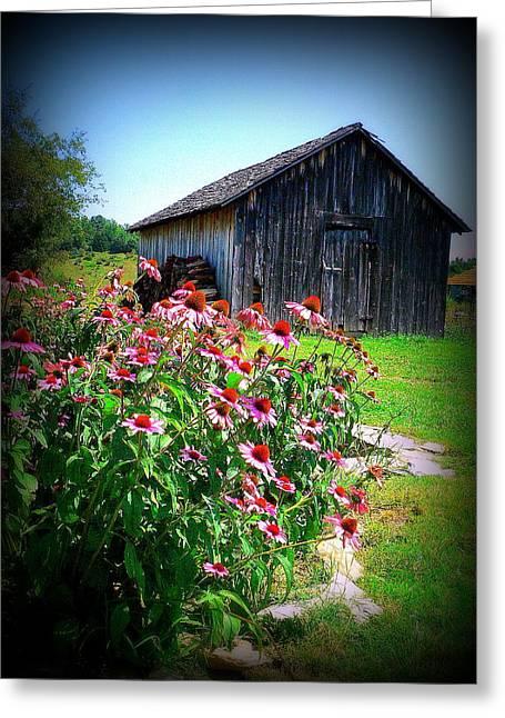 Virginia Barn And Flowers Greeting Card by Jo Anna Wycoff