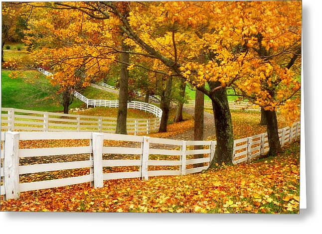 Virginia Horse Country Greeting Card