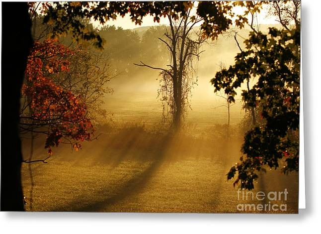 Virginia Sunrise Greeting Card by Carol Lynn Coronios