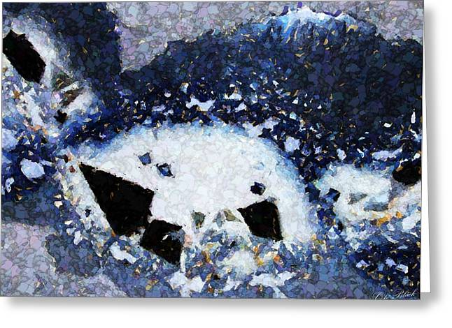 Visions In Blue Greeting Card by Cole Black
