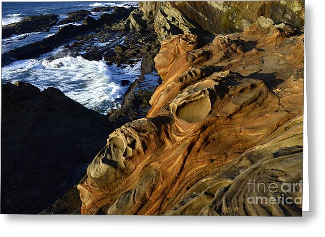 Visions Of Nature 5 Greeting Card by Bob Christopher