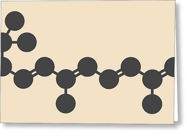 Vitamin A Molecule Greeting Card by Molekuul