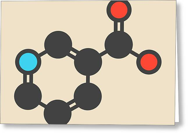Vitamin B3 Molecule Greeting Card