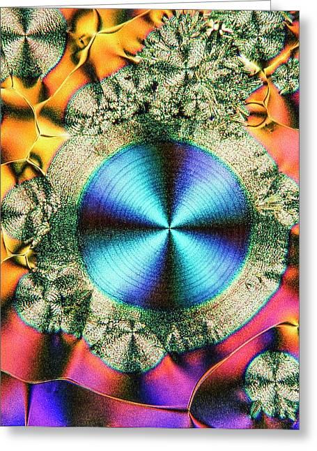 Vitamin C Greeting Card by Alfred Pasieka