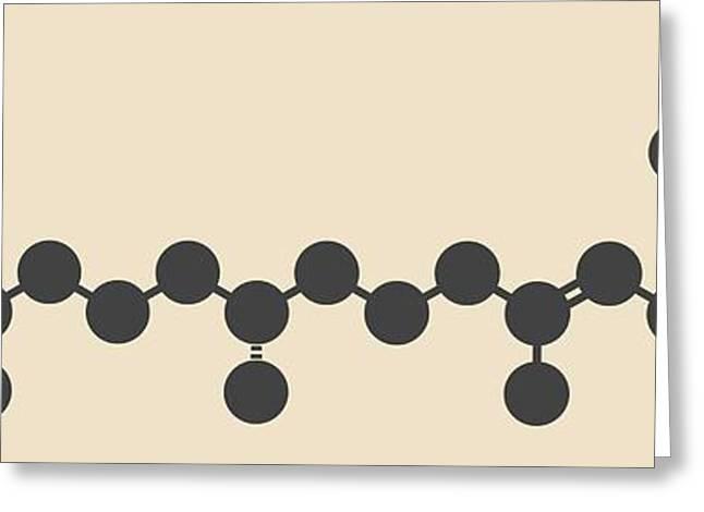 Vitamin K1 Molecule Greeting Card by Molekuul