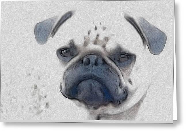 Vito Greeting Card by Cindy Luelling