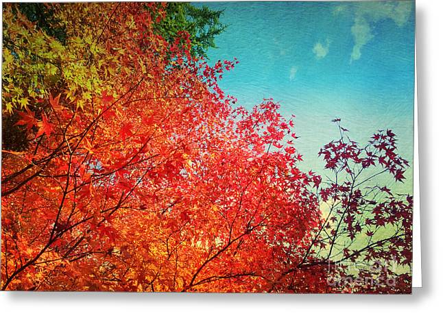 Vivid Autumn Maple Leaves Painterly Textures Greeting Card by Beverly Claire Kaiya
