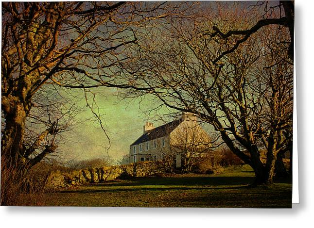Voe House Framed By Trees Greeting Card by Anne Macdonald