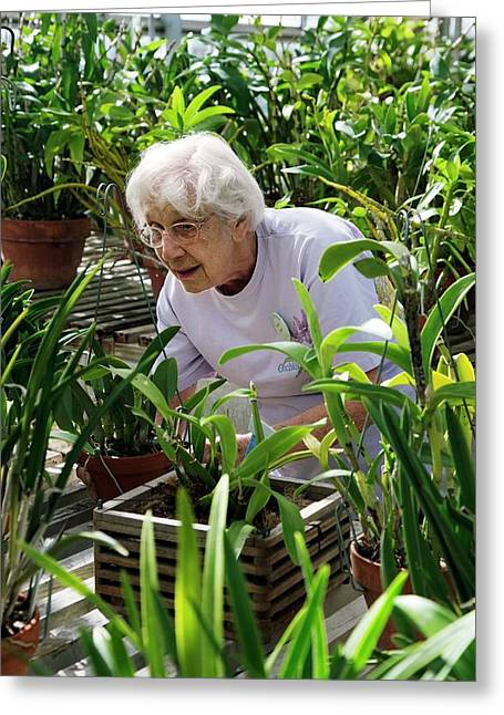 Volunteer At A Botanic Garden Greeting Card by Jim West