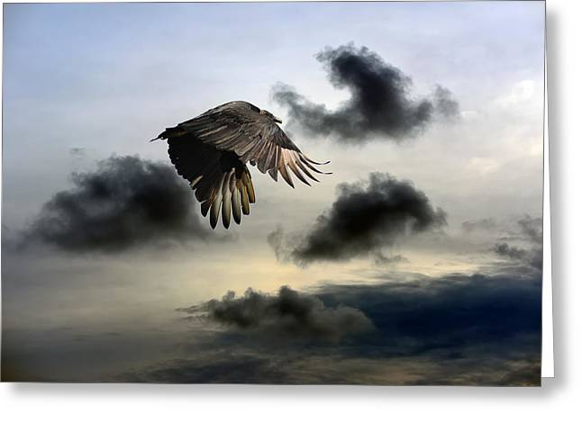 Vulture Sky Greeting Card by Patrick Wolf