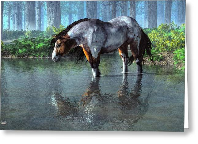 Wading Horse Greeting Card by Daniel Eskridge