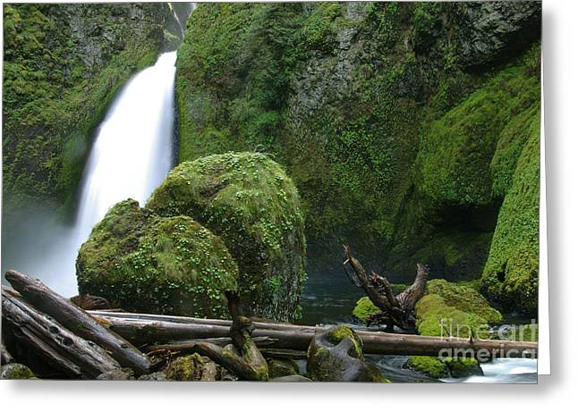Wahclella Falls And Boulder Greeting Card